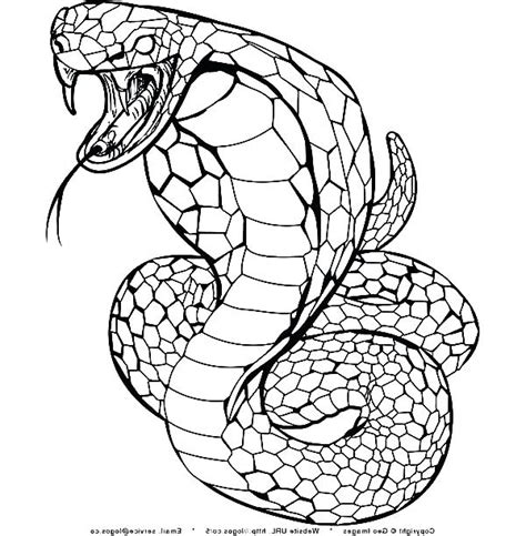 coloring page king cobra cobra coloring page colouring in snazzy snake coloring