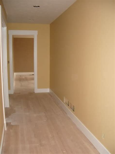 colors that look with gold humble gold paint color sherwin williams home decor