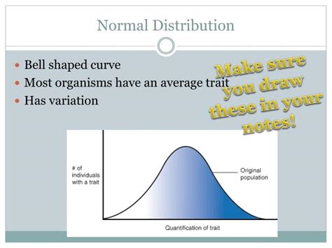 Ppt How Natural Selection Works Powerpoint Presentation Bell Curve Ppt
