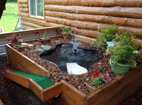 Backyard Habitat Ideas Las 25 Mejores Ideas Sobre Terrario Para Tortugas En Pinterest Recinto De Reptiles Acuario