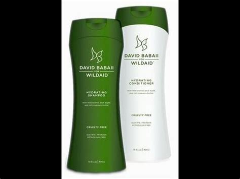 david babaii hair products david babaii shoo