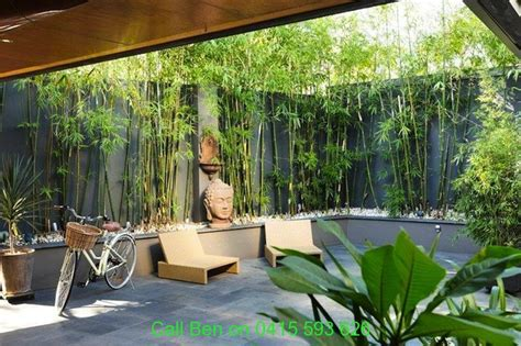 Backyard Bamboo Garden by Eltham Gardening Service 3095 Free Quote Call Ben 0415
