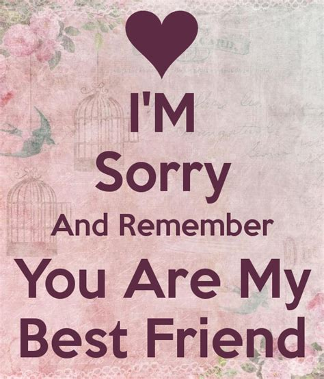 sorry quotes quotes about sorry best friend 16 quotes