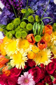 colorful creations weddings fresh wedding style expert colorful creations