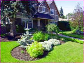 Low Maintenance Backyard Landscaping Pictures by Low Maintenance Front Yard Landscape Ideas Home Design Ideas