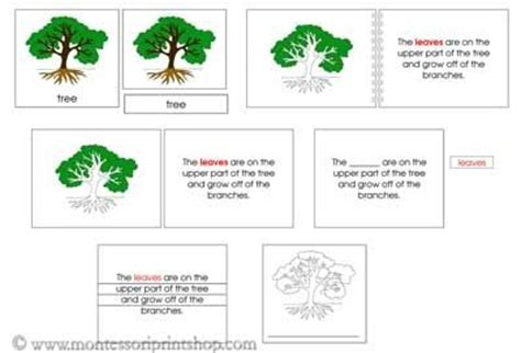 montessori tree printable tree definition nomenclature set printable montessori