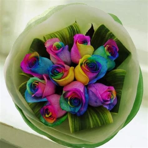 Roses Delivery by Singapore Rainbow Roses Delivery In Singapore