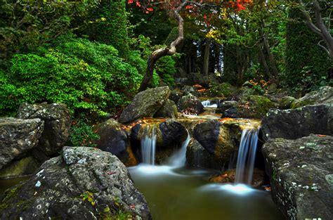 hitheater japanischer garten bonn bachlauf japanischer garten bonn foto bild landschaft