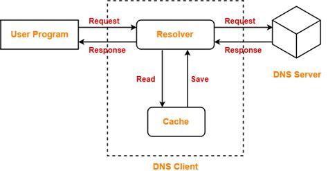 dns  networking dns resolution gate vidyalay