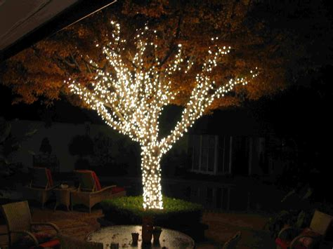 15 best ideas of hanging lights on large outdoor tree
