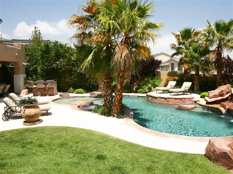 backyard palm trees photos hgtv