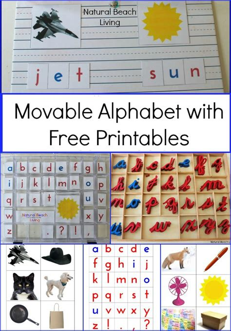 printable montessori activities diy montessori movable alphabet free printables