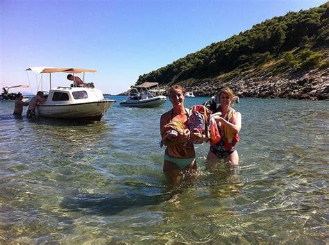dubrovnik boat trips prices boat trip picture of dubrovnik backpackers club hostel