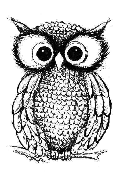 owl zentangle tattoo bagoly transzfer pinterest owl applique ideas and