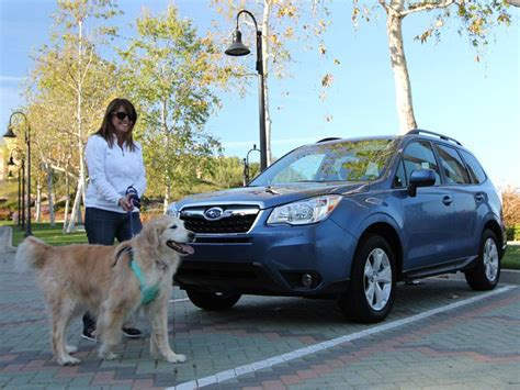 best cars for dogs the 10 best cars for dogs autobytel