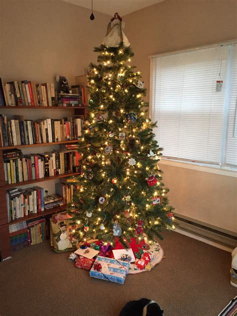 christmas marvelousas funny picture christmas trees
