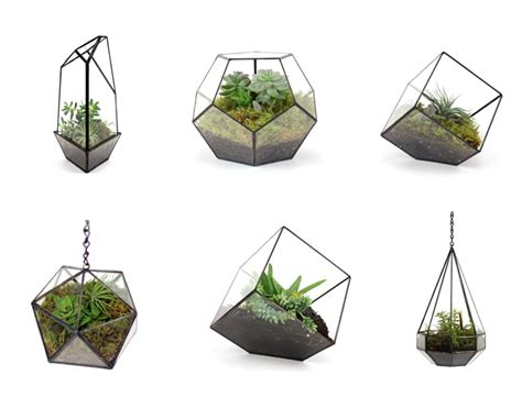 handmade hanging and table top plants terrariums one decor