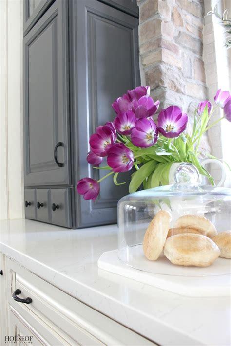 kitchen window terrarium pretty storage solutions for kitchen cloches and terrariums