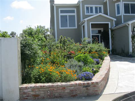 succulent front yard design california succulent front yard traditional