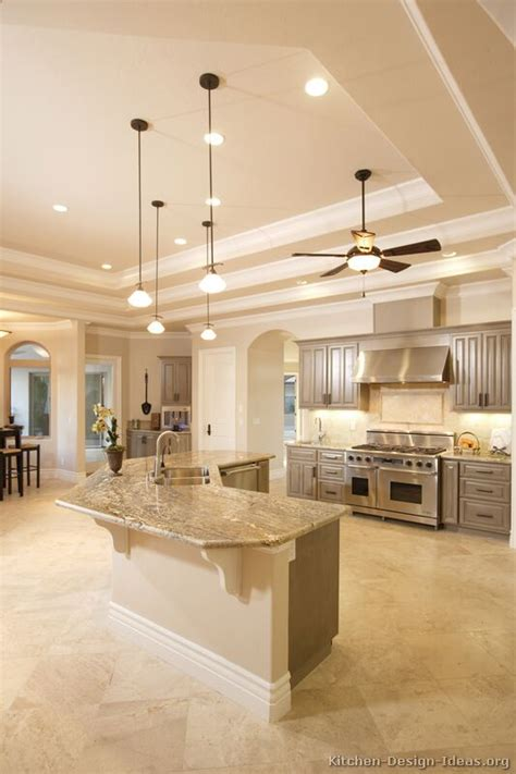 Kitchen Ceilings Designs Pictures Of Kitchens Traditional Gray Kitchen Cabinets Kitchen 3