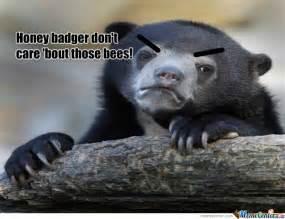 Badger Memes - honey badger don t care by hotfudge meme center