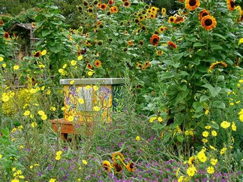 backyard honey bees the melissa garden it is a place where the buzzing of