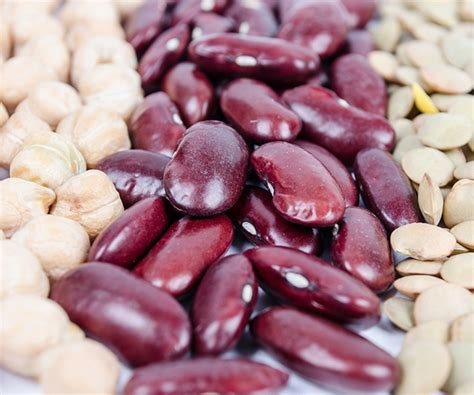 nuts seeds beans tofu recipes  nutrition source