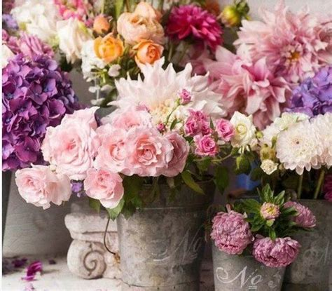 fiori provenzali 7 idee creative per sistemare i fiori in stile shabby chic