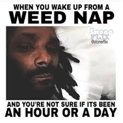 Funny Weed Memes - weed memes funny 20 wishmeme
