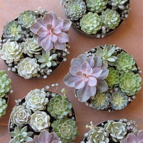 diy wedding crafts succulent wedding centerpiece ideas