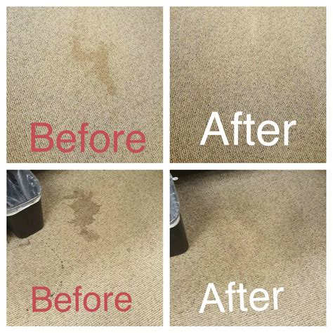 rug cleaning orlando instadryandrew from our trusted pros