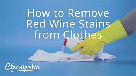 removing red wine stains from upholstery how to remove red wine stains from clothes youtube