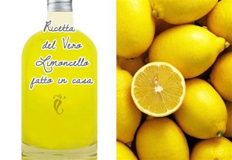 crema di limoncello fatta in casa crema di limoncello fatta in casa le ricette dell vero