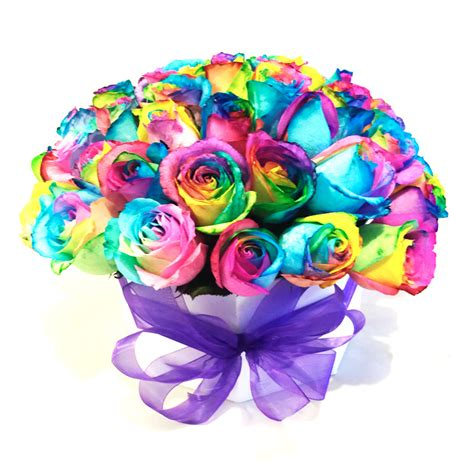 imagenes de flores multicolores 50 rosas arcoiris flores y expresiones
