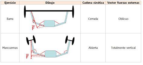 cadena cinetica ejercicios barras vs mancuernas 191 con cu 225 l se levanta m 225 s peso