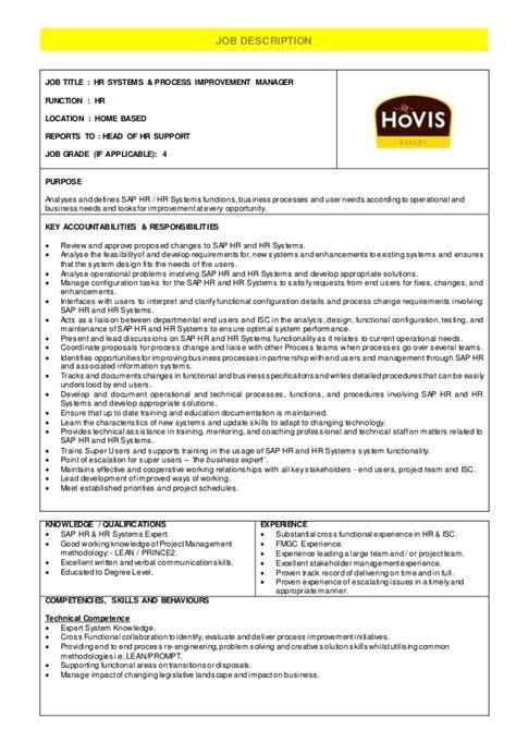 hr systems process improvement manager description