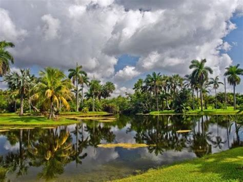 Gardens Detox In Miami by 17 Best Images About Miami On Popular Miami