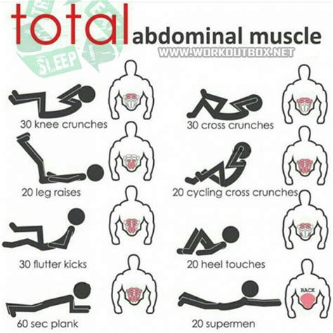 total abdominal sixpack workout plan abs power yeah we ejercicios