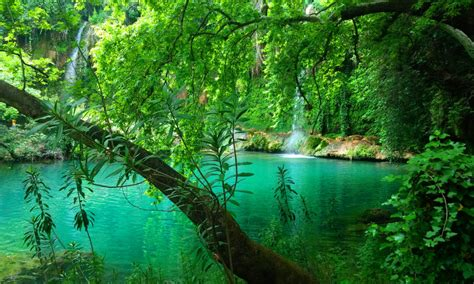 kursunlu waterfall pine forest turquoise green water