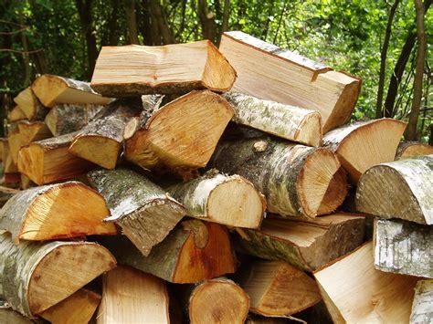 define wood logs