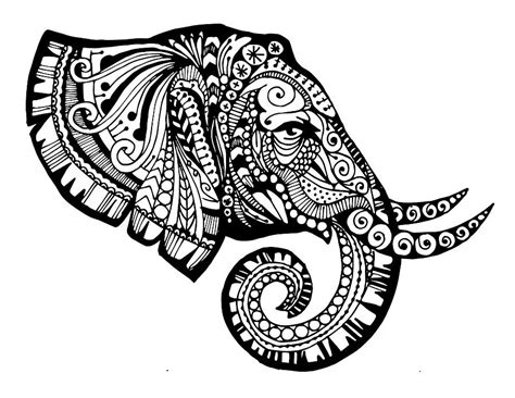elegant elephant drawing by sadie maughan
