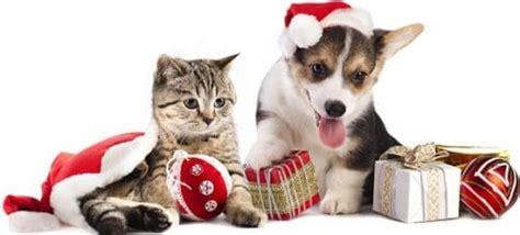 kind  christmas gifts  list christmas gifts