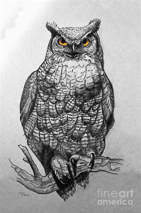 great horned owl black and white painting by sandi oreilly