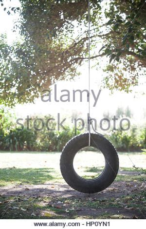 Tire Swing Hanging From Tree Over Tranquil Lake Stock