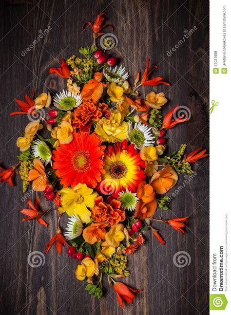 fiori di bacche fiori e bacche autunnali fotografia stock immagine di