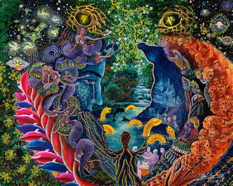 the psychedelic leap ayahuasca psilocybin and other visionary plants along the spiritual path books pablo amaringo melt
