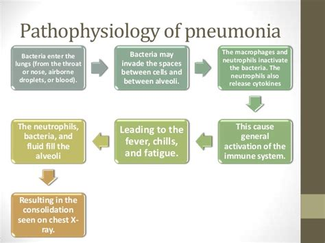 pathophysiology of pneumonia diagram pathophysiology of fever infection in diagram form