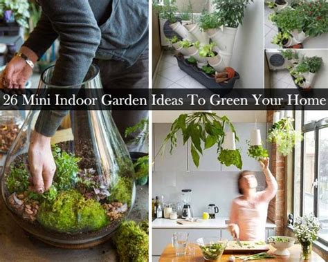 house gardening tips 26 mini indoor garden tips to green your house decor advisor