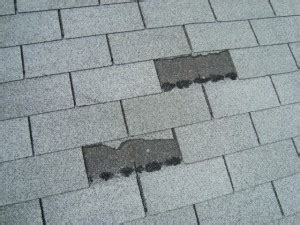 buying a house with a bad roof tell tale signs your roof is in bad shape whats on my walls