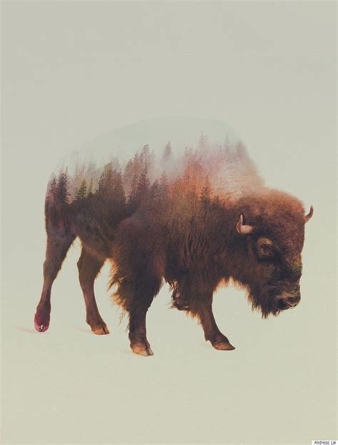 bison tattoos 25 best ideas about bison on buffalo